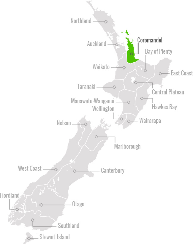 Coromandel region in New Zealand