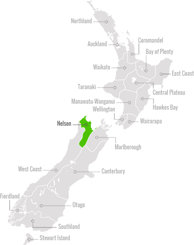 New Zealand Nelson Map