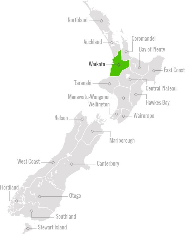 Waikato, Hamilton and Waitomo New Zealand – Just NZ - Just