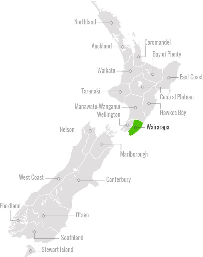 Wairarapa Region Map