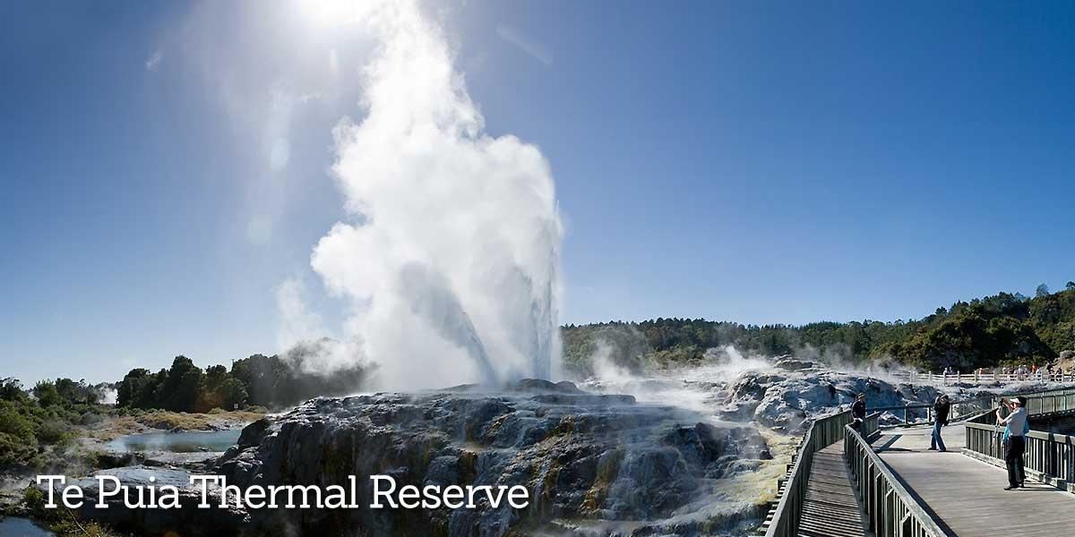 Rotorua Te Puia Thermal Reserve