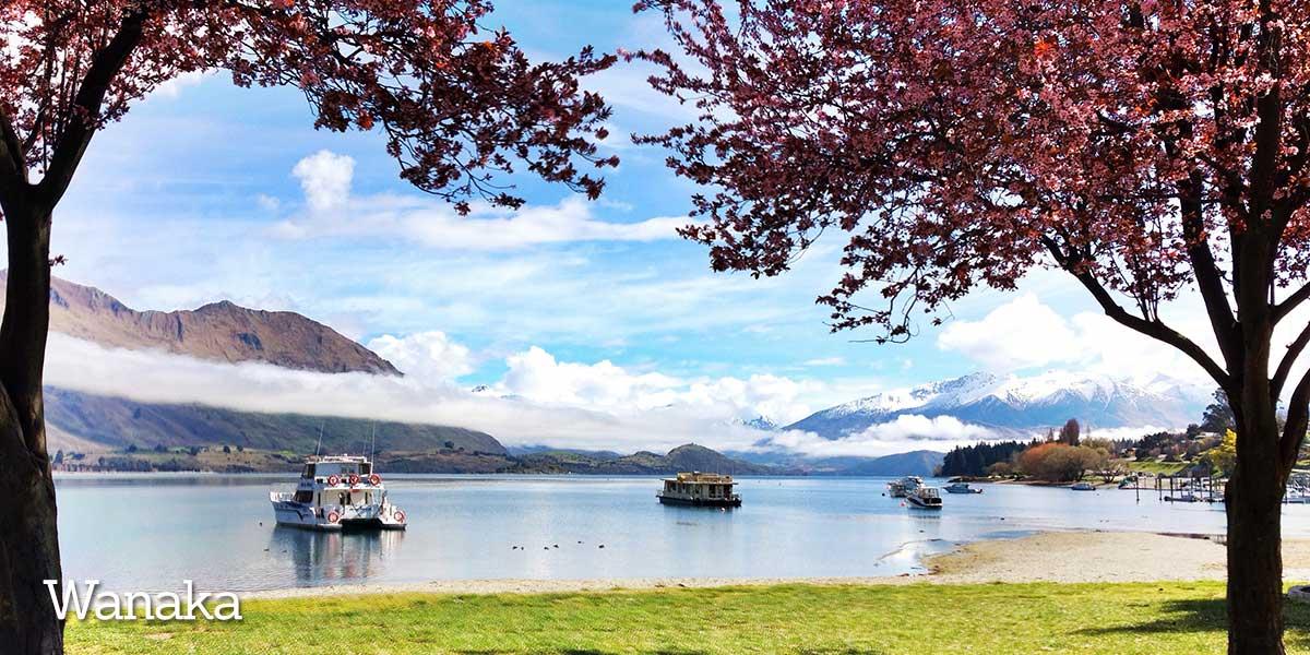 Otago Lake Wanka