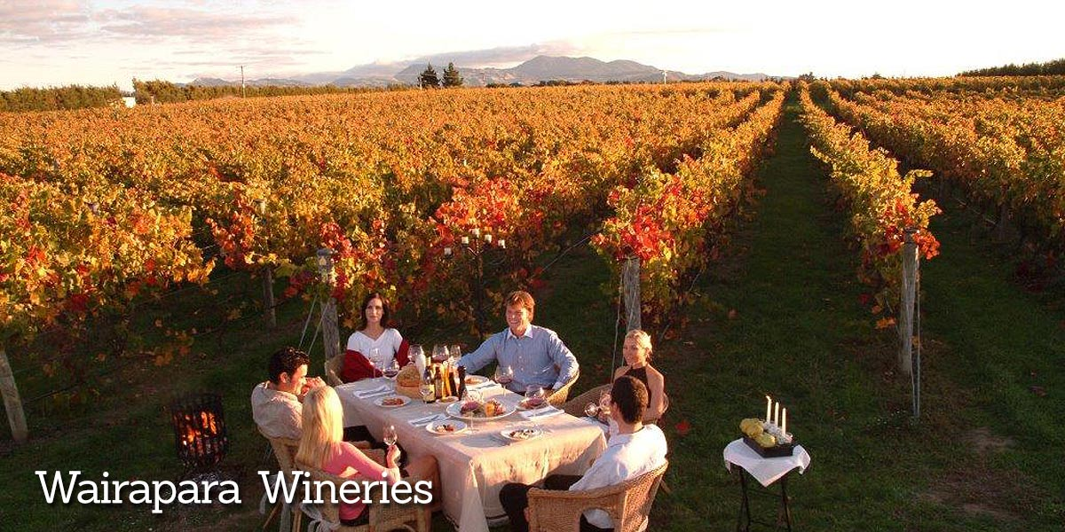 Visit Wineries Wairapara