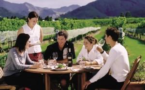 Winery tour, Marlborough