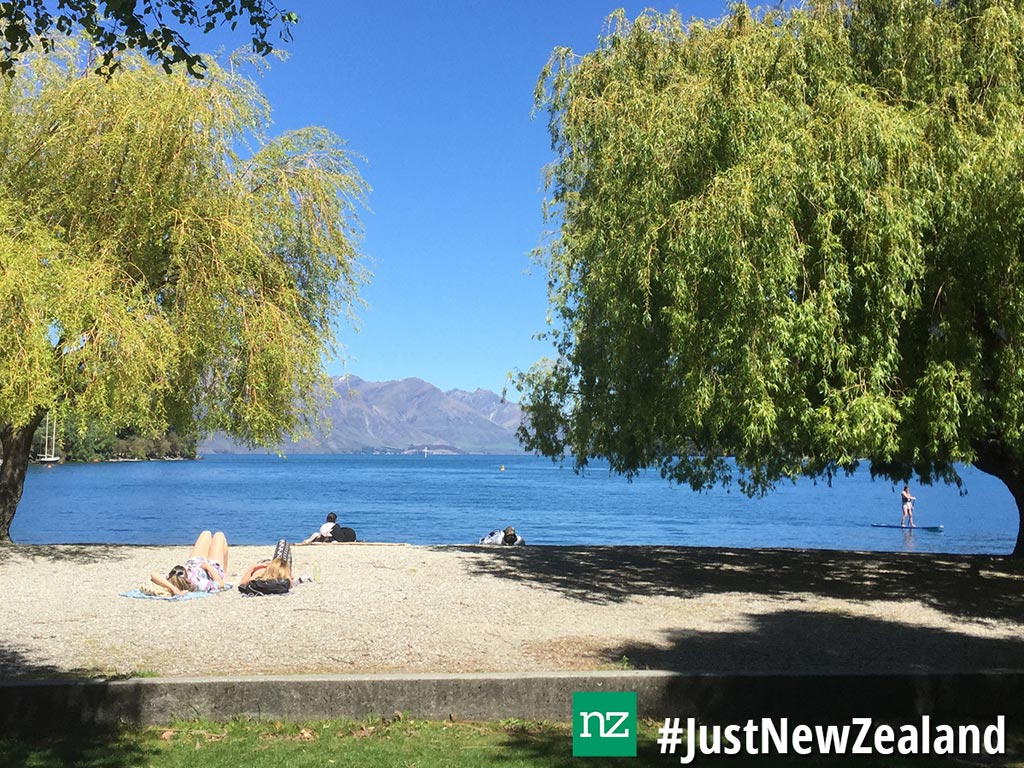 Top New Zealand Hashtags