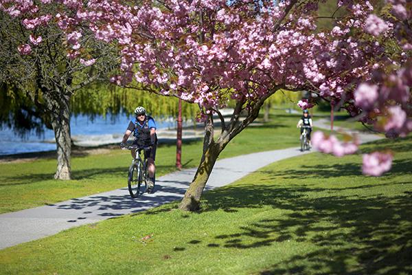 Spring in Queenstown